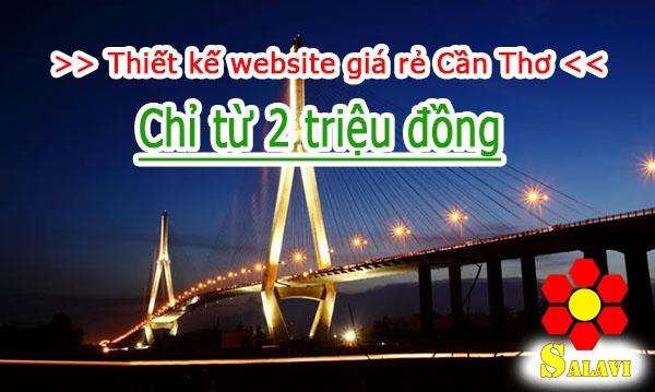 Salavi Agency - Dịch vụ thiết kế Website giá rẻ Cần Thơ